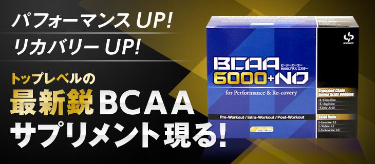 パフォーマンスUP!リカバリーUP!トップレベルの最新鋭BCAAサプリメント現る!